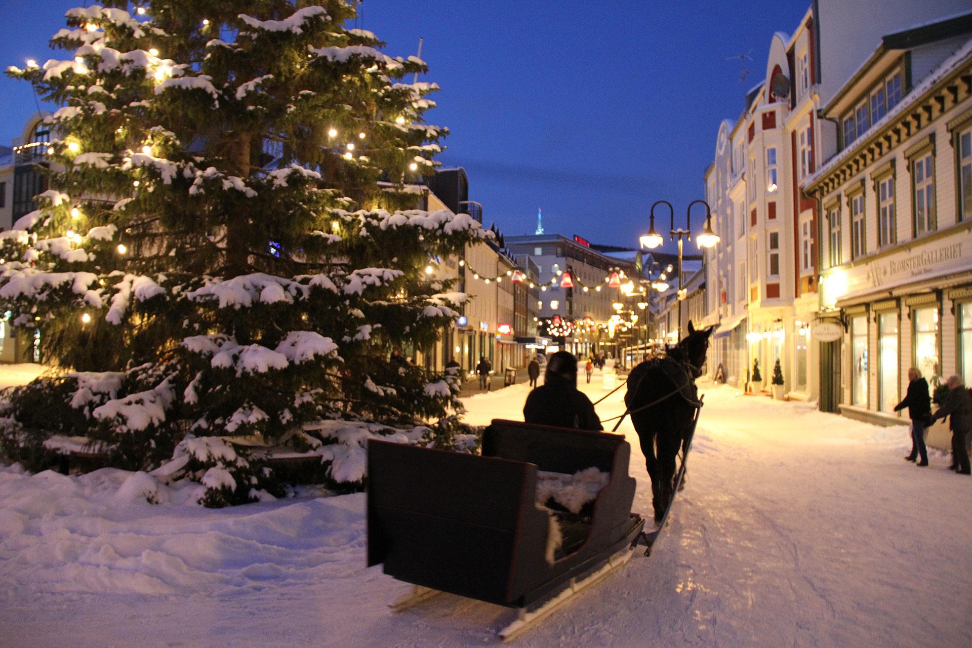 norwegian amateur sex sex harstad